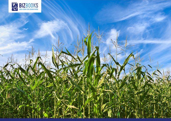 Khởi nghiệp lĩnh vực nông nghiệp - những startup tiên phong giúp bạn có thêm động lực